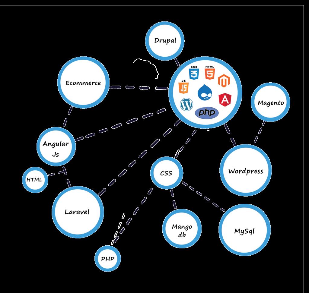 Web Development Company in india,web design company in india